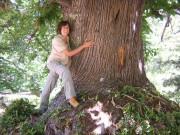 anna_albero